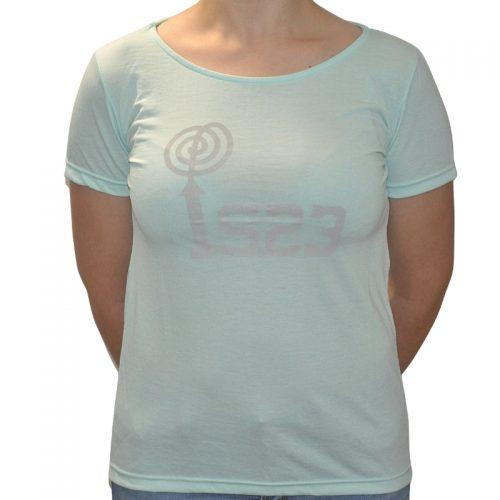 Camiseta Gildan Celeste